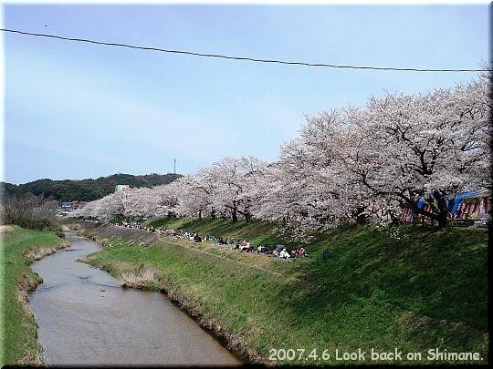 2007.04.06さくらの里きすき3.JPG