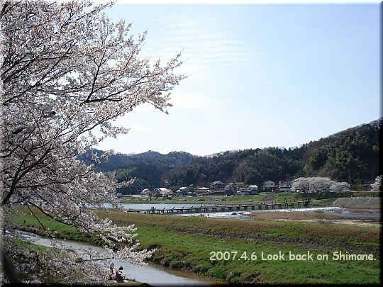 2007.04.06さくらの里きすき6.JPG