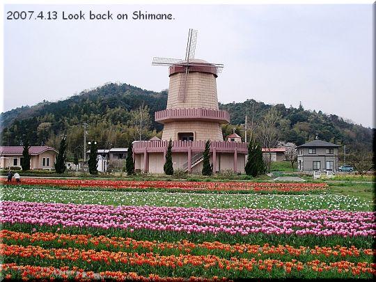 2007.04.13安来市チューリップ畑4.JPG
