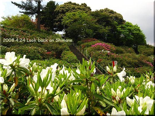 2008.04.24斐川公園3.JPG